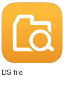 inf_ds-file